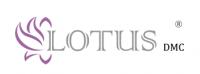 Top jobs, job vacancies LOTUS dmc logo
