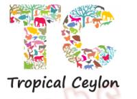 Top jobs, job vacancies Tropical Ceylon (Pvt) Limited logo