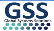 Top jobs, job vacancies Global System Solutions International (Pvt) Ltd logo