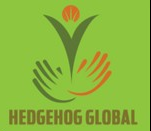 Top jobs, job vacancies Hedgehog Global logo