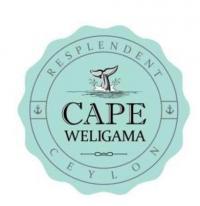 Top jobs, job vacancies CAPE WELIGAMA RESORT logo